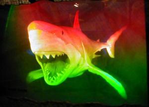 53583552.SharkHologramatSentosaUnderwaterWorld
